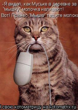 """Котоматрица: -Я видел, как Муське в деревне за """"мышку"""" молочка наливают! Вот! Принес """"Мыша"""" тащите молока!"""