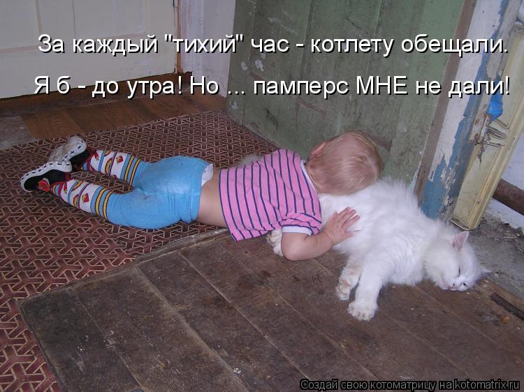 "Котоматрица: За каждый ""тихий"" час - котлету обещали. Я б - до утра! Но ... памперс МНЕ не дали!"