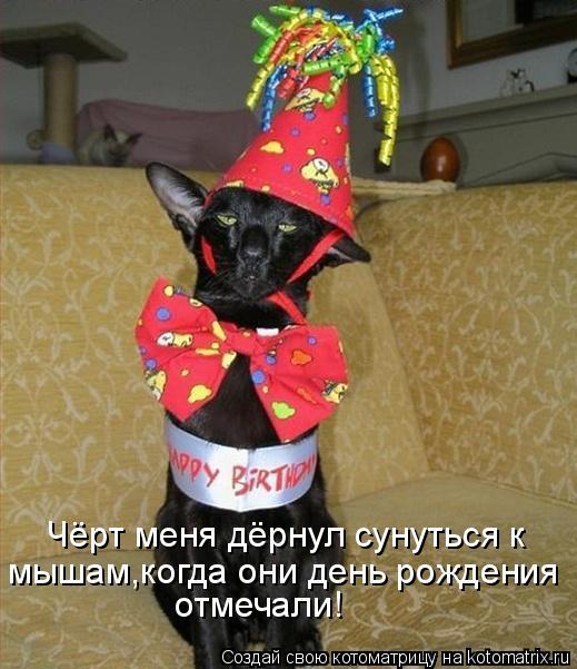 Котоматрица - Чёрт меня дёрнул сунуться к мышам,когда они день рождения отмечали!