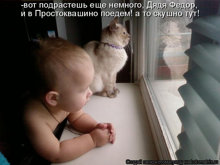 Котоматрица: -вот подрастешь еще немного, Дядя Федор, и в Простоквашино поедем! а то скушно тут!