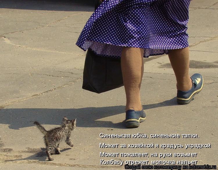 Котоматрица: Синенькая юбка, синенькие тапки. Может за хозяйкой я крадусь украдкой Может пожалеет, на руки возьмет Колбасу отрежет, молочка нальет