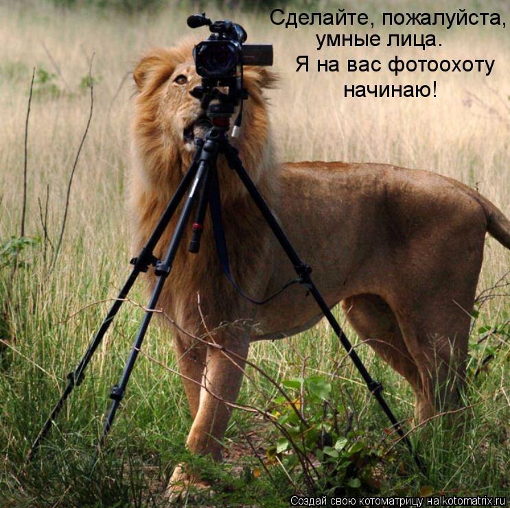 Котоматрица: Сделайте, пожалуйста, умные лица. Я на вас фотоохоту начинаю!