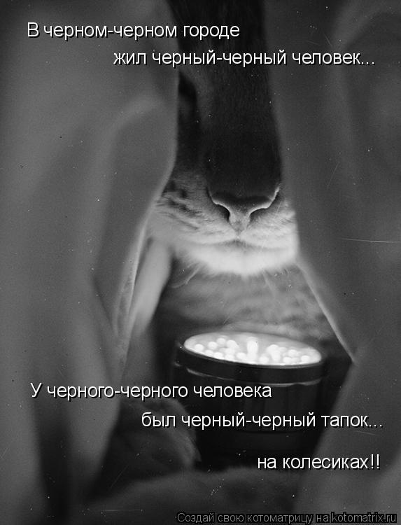 Котоматрица - В черном-черном городе жил черный-черный человек... У черного-черного