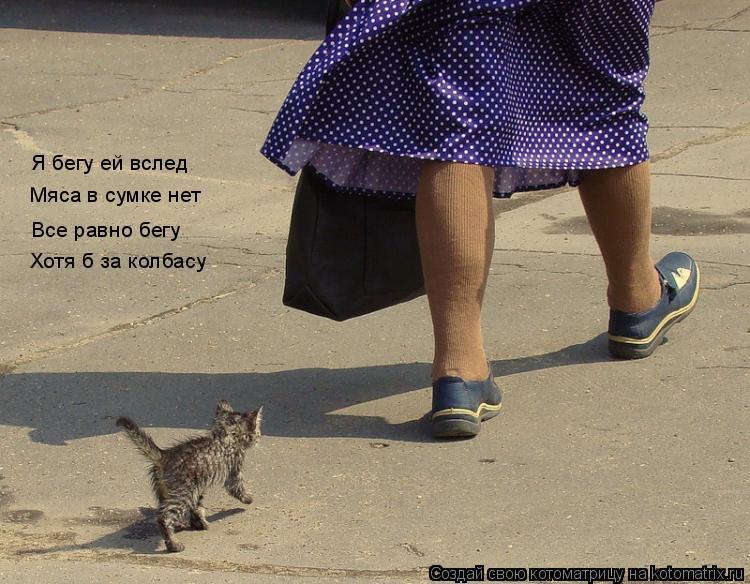 Котоматрица: Я бегу ей вслед Мяса в сумке нет Все равно бегу Хотя б за колбасу