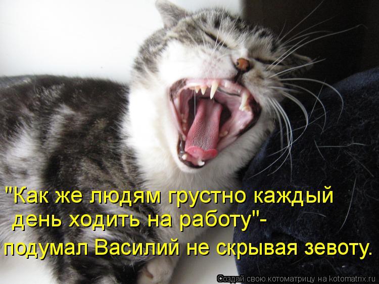 """Котоматрица: """"Как же людям грустно каждый день ходить на работу""""- подумал Василий не скрывая зевоту."""