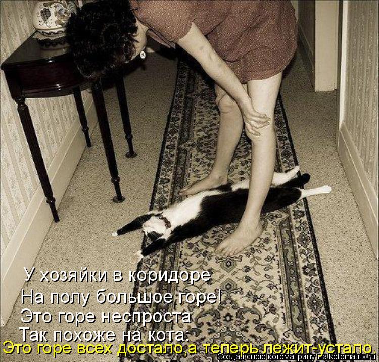 Котоматрица: У хозяйки в коридоре На полу большое горе! Это горе неспроста Так похоже на кота: Это горе всех достало,а теперь лежит-устало...