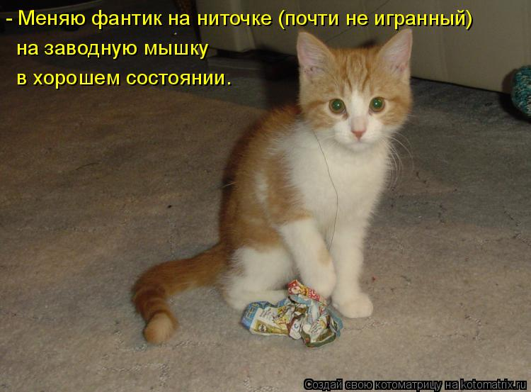 http://kotomatrix.ru/images/lolz/2011/10/28/1025620.jpg
