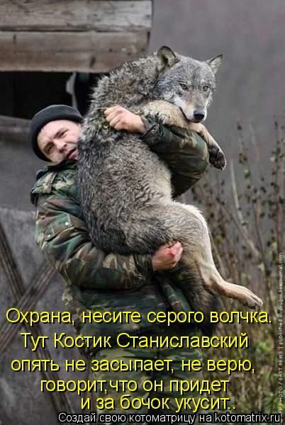 Котоматрица: Охрана, несите серого волчка.  Тут Костик Станиславский  опять не засыпает, не верю, говорит,что он придет  и за бочок укусит..