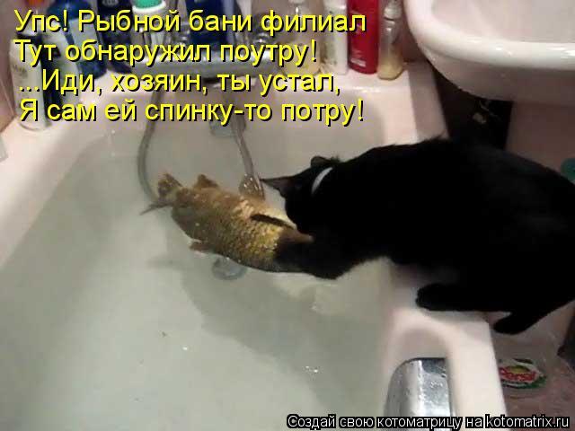 Котоматрица: Упс! Рыбной бани филиал Тут обнаружил поутру! ...Иди, хозяин, ты устал,  Я сам ей спинку-то потру!