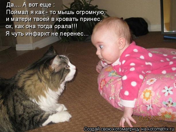 Котоматрица: Да.... А вот еще : Поймал я как - то мышь огромную, и матери твоей в кровать принес, ох, как она тогда орала!!! Я чуть инфаркт не перенес...