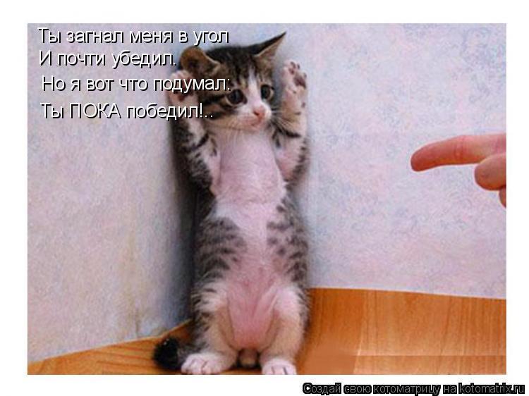 http://kotomatrix.ru/images/lolz/2011/10/30/1026404.jpg