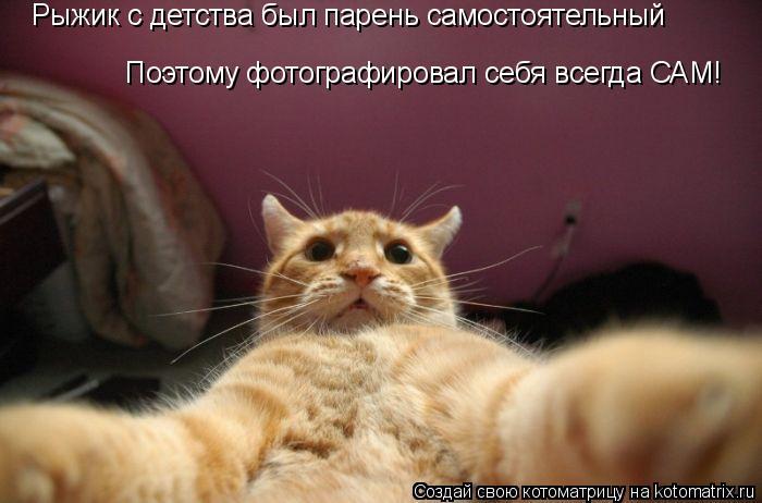 Котоматрица: Рыжик с детства был парень самостоятельный Поэтому фотографировал себя всегда САМ!