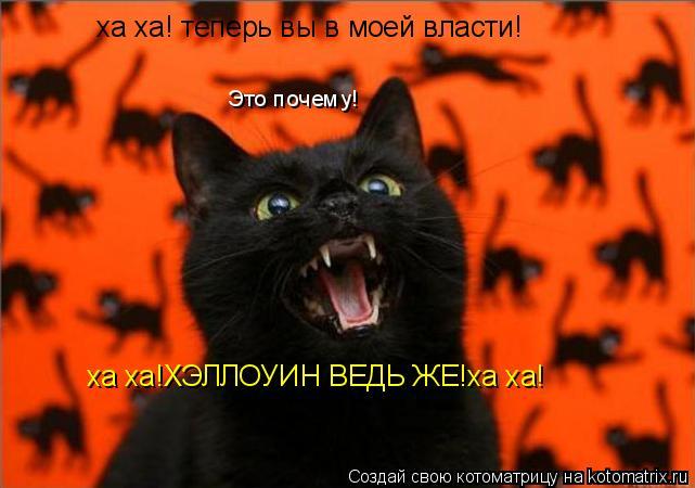 Котоматрица: ха ха! теперь вы в моей власти! Это почему! ха ха!ХЭЛЛОУИН ВЕДЬ ЖЕ!ха ха!