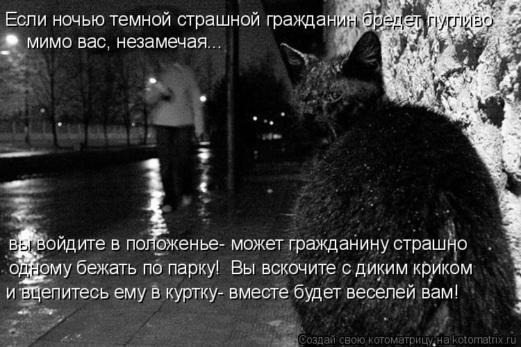 Котоматрица: вы войдите в положенье- может гражданину страшно одному бежать по парку!  Вы вскочите с диким криком Если ночью темной страшной гражданин б