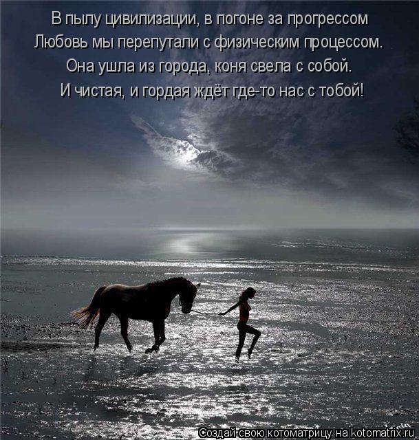 Котоматрица: В пылу цивилизации, в погоне за прогрессом Любовь мы перепутали с физическим процессом. Она ушла из города, коня свела с собой. И чистая, и го