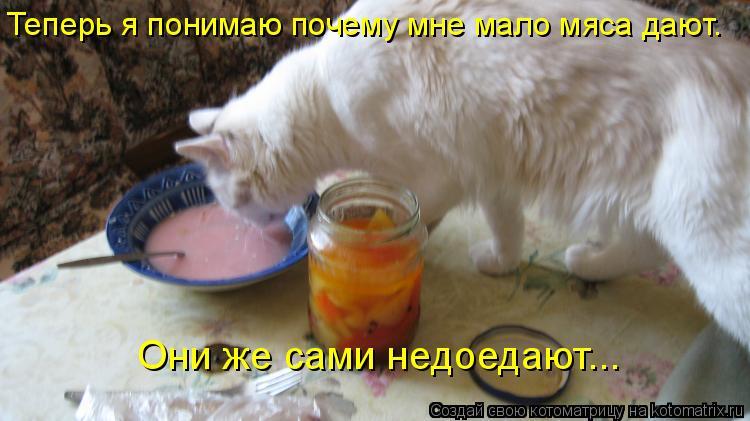 Котоматрица - Теперь я понимаю почему мне мало мяса дают.  Они же сами недоедают...