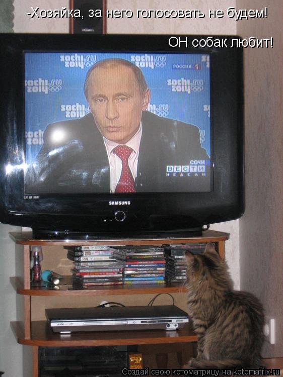 Котоматрица: -Хозяйка, за него голосовать не будем! ОН собак любит!