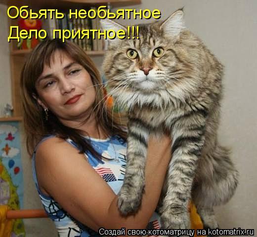 Котоматрица: Обьять необьятное Дело приятное!!!