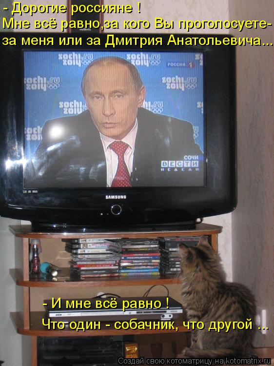 Котоматрица: - Дорогие россияне ! Мне всё равно,за кого Вы проголосуете- за меня или за Дмитрия Анатольевича... - И мне всё равно ! Что один - собачник, что др