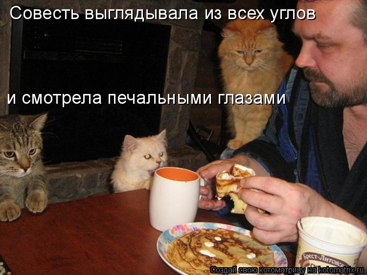 Котоматриця!)))) - Страница 9 1028443