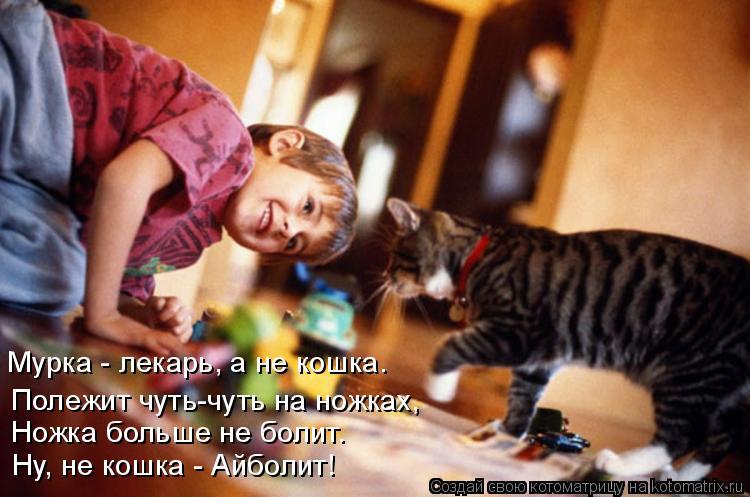 Котоматрица: Мурка - лекарь, а не кошка. Полежит чуть-чуть на ножках, Ножка больше не болит. Ну, не кошка - Айболит!