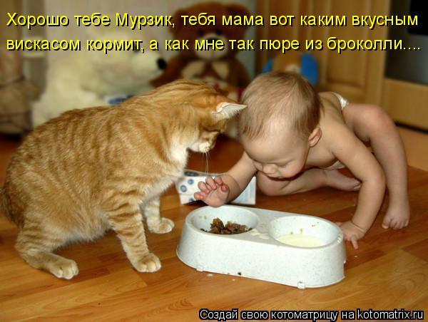 Котоматрица - Хорошо тебе Мурзик, тебя мама вот каким вкусным  вискасом кормит, а ка