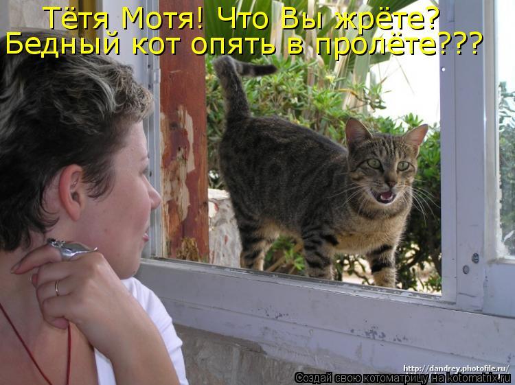 Котоматрица: Тётя Мотя! Что Вы жрёте? Бедный кот опять в пролёте???