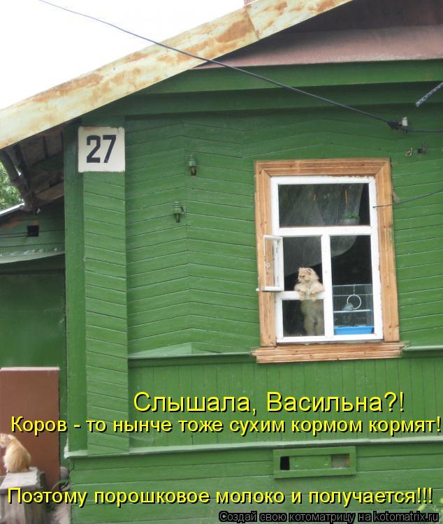 Котоматрица: Слышала, Васильна?! Коров - то нынче тоже сухим кормом кормят! Поэтому порошковое молоко и получается!!!