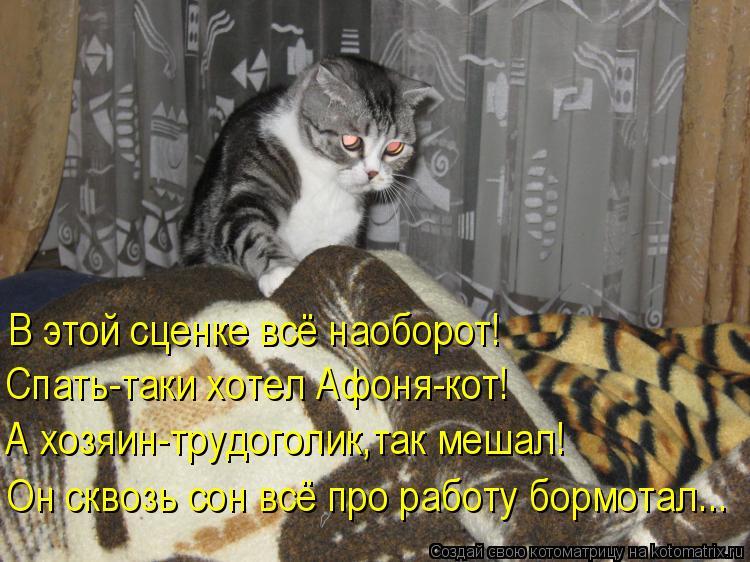 Котоматрица: В этой сценке всё наоборот! Спать-таки хотел Афоня-кот! А хозяин-трудоголик,так мешал! Он сквозь сон всё про работу бормотал...