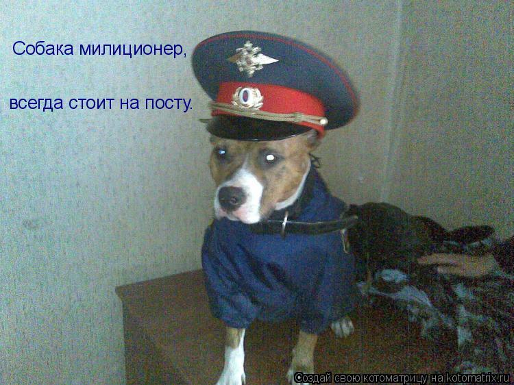 Котоматрица: Собака милиционер, всегда стоит на посту.