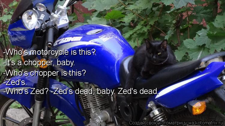Котоматрица: -Who's motorcycle is this? -It's a chopper, baby. -Who's chopper is this? -Zed's. -Who's Zed? -Zed's dead, baby. Zed's dead.