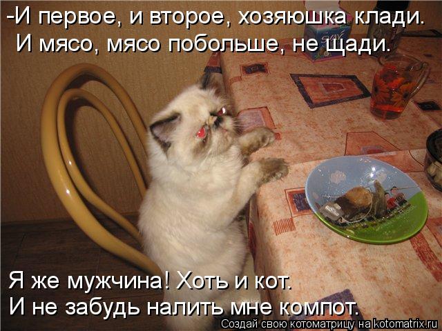 Котоматрица: -И первое, и второе, хозяюшка клади. И мясо, мясо побольше, не щади. Я же мужчина! Хоть и кот. И не забудь налить мне компот.