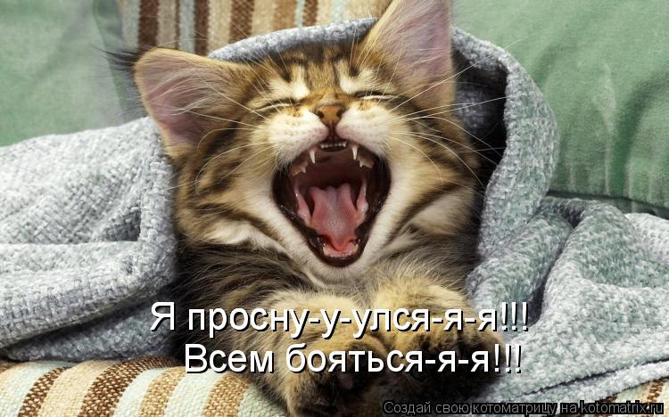 Котоматрица: Всем бояться-я-я!!! Я просну-у-улся-я-я!!! Я просну-у-улся-я-я!!! Я просну-у-улся-я-я!!!