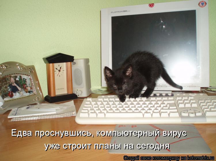 Котоматрица - Едва проснувшись, компьютерный вирус уже строит планы на сегодня