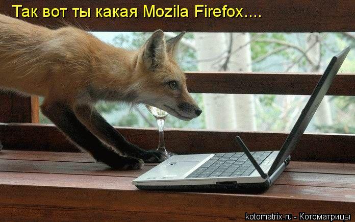 Котоматрица: Так вот ты какая Mozila Firefox....