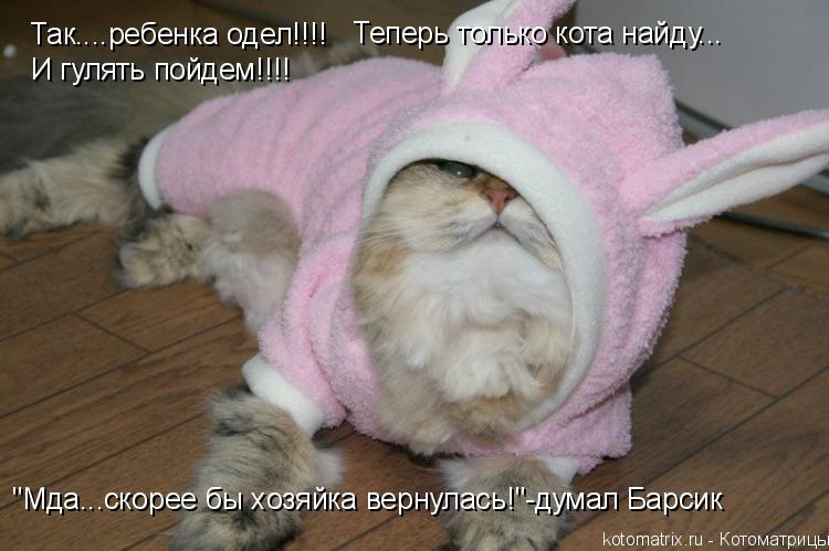 """Котоматрица: Так....ребенка одел!!!! Теперь только кота найду... И гулять пойдем!!!! """"Мда...скорее бы хозяйка вернулась!""""-думал Барсик"""