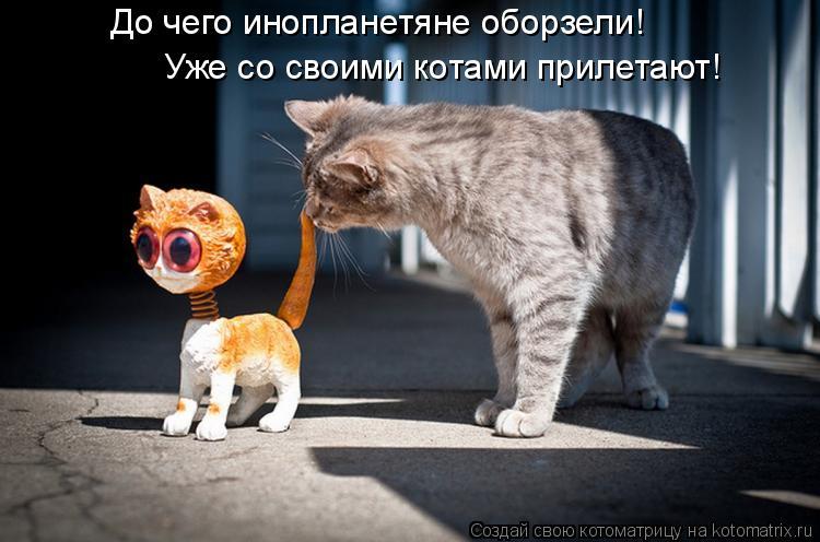 Котоматрица - До чего инопланетяне оборзели! Уже со своими котами прилетают!