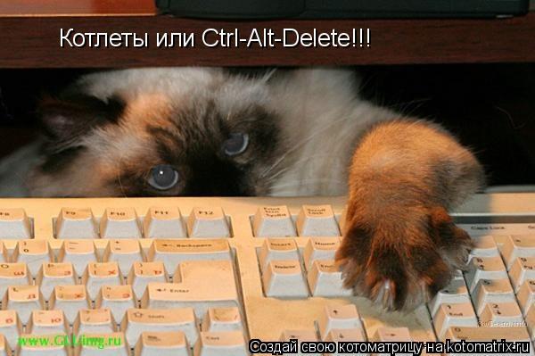 Котоматрица: Котлеты или Ctrl-Alt-Delete!!!