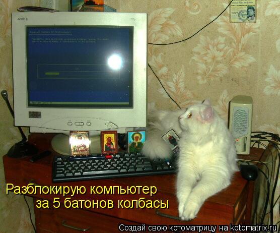 Котоматрица: Разблокирую компьютер за 5 батонов колбасы
