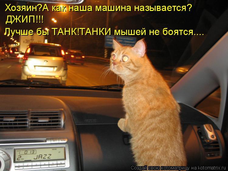 Котоматрица: Хозяин?А как наша машина называется? ДЖИП!!! Лучше бы ТАНК!ТАНКИ мышей не боятся....