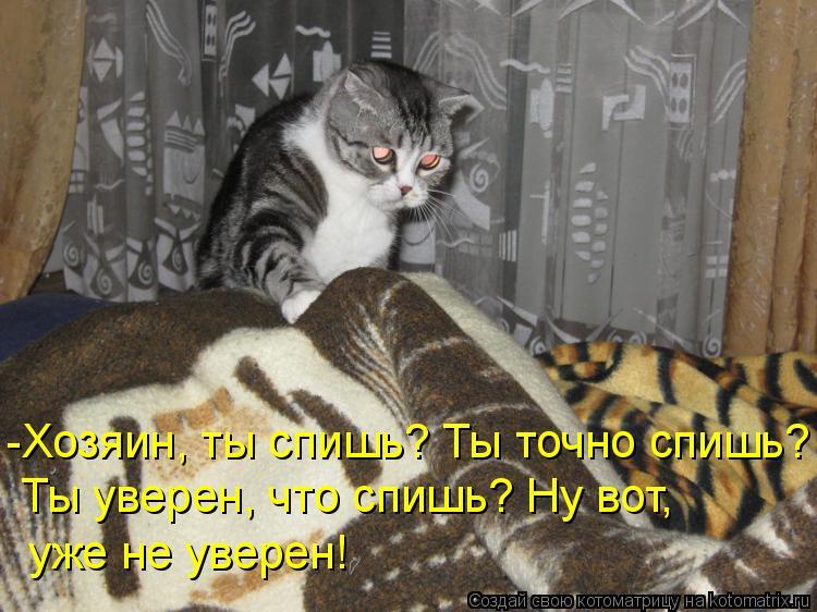 Котоматрица - -Хозяин, ты спишь? Ты точно спишь? Ты уверен, что спишь? Ну вот, уже н