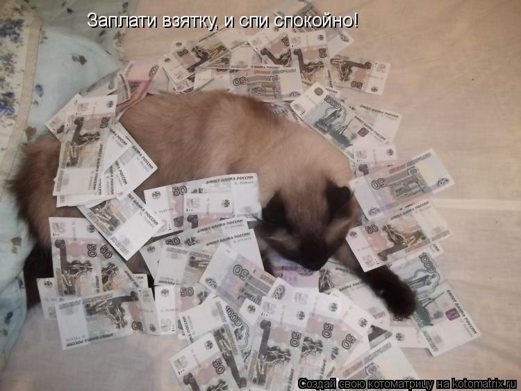 Котоматрица: Заплати взятку, и спи спокойно!