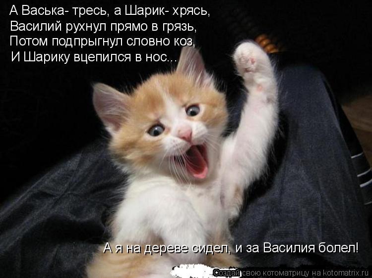 Котоматрица: А Васька- тресь, а Шарик- хрясь, Василий рухнул прямо в грязь, Потом подпрыгнул словно коз, И Шарику вцепился в нос... А я на дереве сидел, и за В