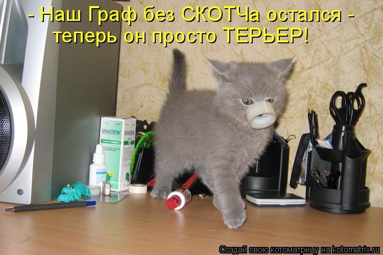 Котоматрица: - Наш Граф без СКОТЧа остался -  теперь он просто ТЕРЬЕР!
