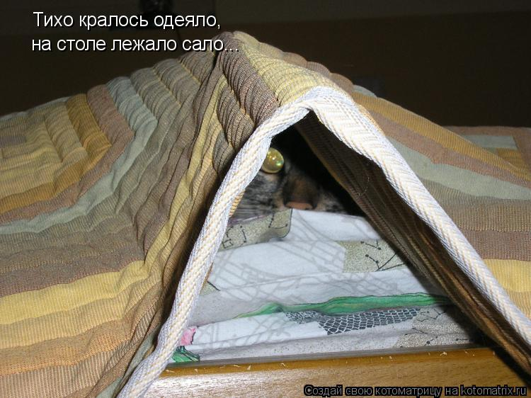 Котоматрица - Тихо кралось одеяло, на столе лежало сало...