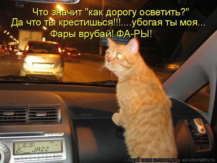 """Котоматрица: Что значит """"как дорогу осветить?"""" Да что ты крестишься!!!....убогая ты моя... Фары врубай! ФА-РЫ!"""