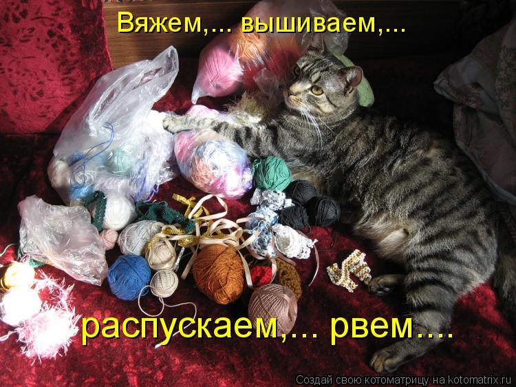 Котоматрица - Вяжем,... вышиваем,...  распускаем,... рвем....