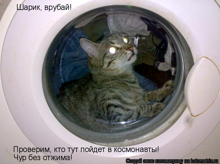Котоматрица: Шарик, врубай!  Проверим, кто тут пойдет в космонавты! Чур без отжима!