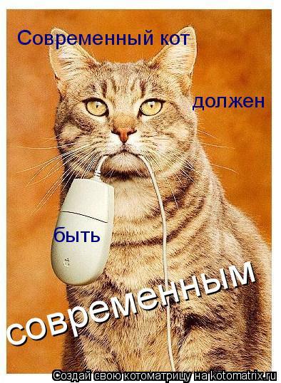 Котоматрица: Современный кот  должен быть современным