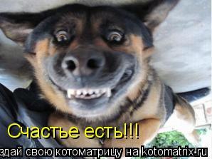 Котоматрица: Счастье есть!!!